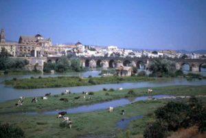 Blick auf Córdoba mit der Silhouette der großen Moschee