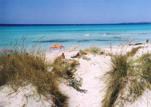 Es Trenc gilt als einer der schönsten, wenn nicht sogar der schönste, Strände Mallorcas