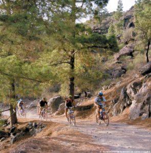 Mountainbiketouren für jede Könnensstufe
