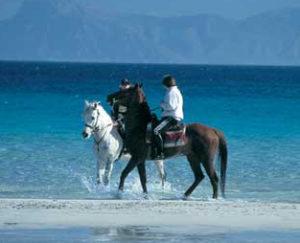 Reiten am Strand auf Mallorca
