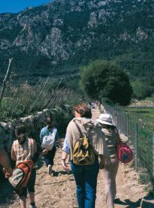 Mallorca bietet unzählige Wanderstrecken mit jedem Schwierigkeitsgrad