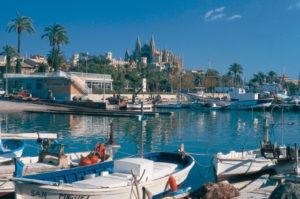 Idylle im Hafen Palmas vor der Kulisse der mächtigen Kathedrale Sa Seu