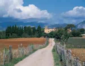 Das Zentrum Mallorcas ist landwirtschaftlich geprägt