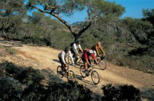 Radfahrer finden auf Zypern ein ausgefeiltes Streckennetz vor