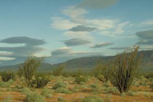 Die Wüste von Anza-Borrego.