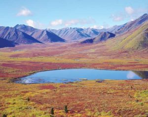 Weite Landschaft des Yukon
