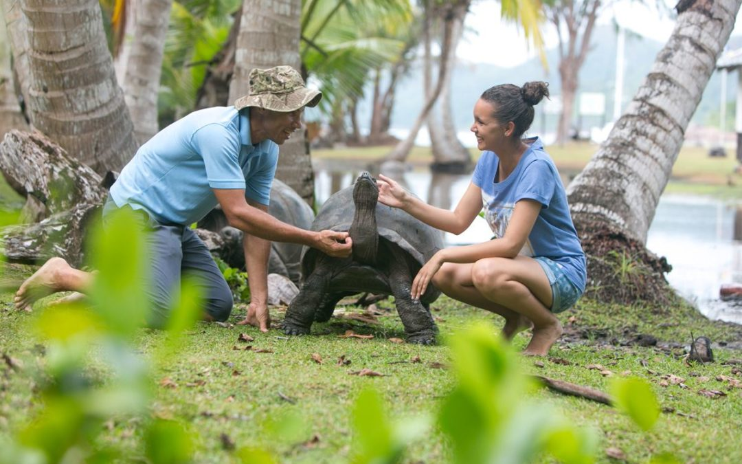 Raffles Seychelles bietet einen Tag mit Riesenschildkröten