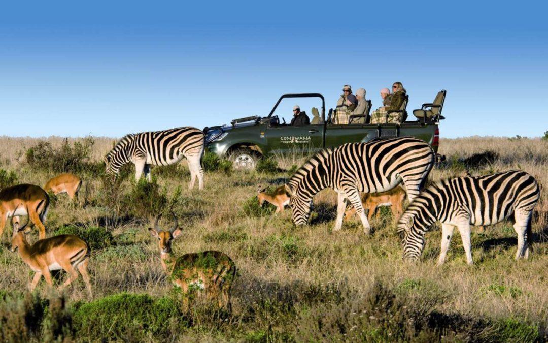Authentische Ranger-Erlebnisse im neuen FTI Afrika-Programm