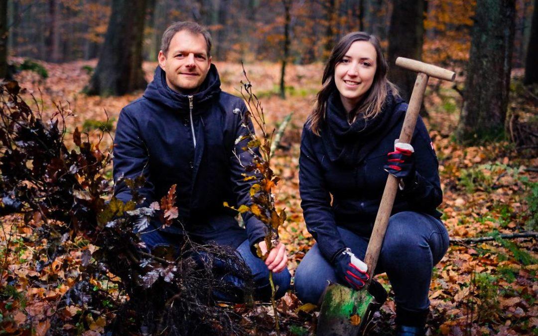 Holiday Extras startet Aufforstungsprogramm im Sachsenwald