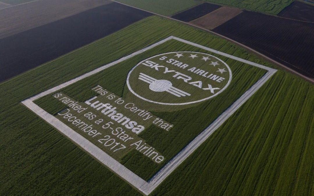 Lufthansa: Skytrax-Urkunde auf 70.000 Quadratmetern