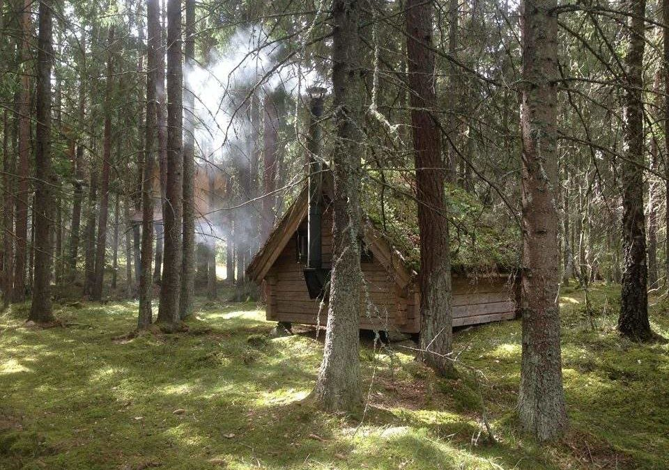 """Waldbad""-Retreat in Östergötland baut Stress ab"