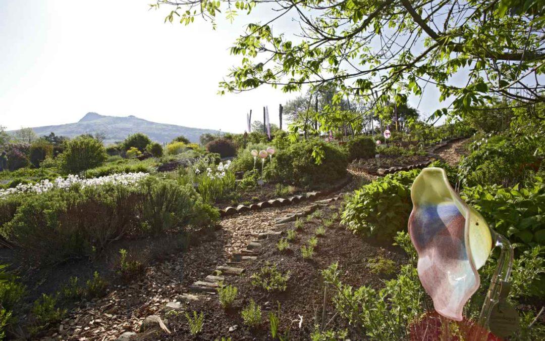 Broschüre zu Gärten und Parks am westlichen Bodensee