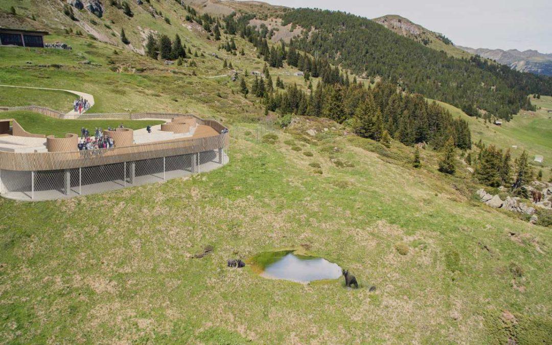 Erstes Schweizer Bärenschutzzentrum in Arosa