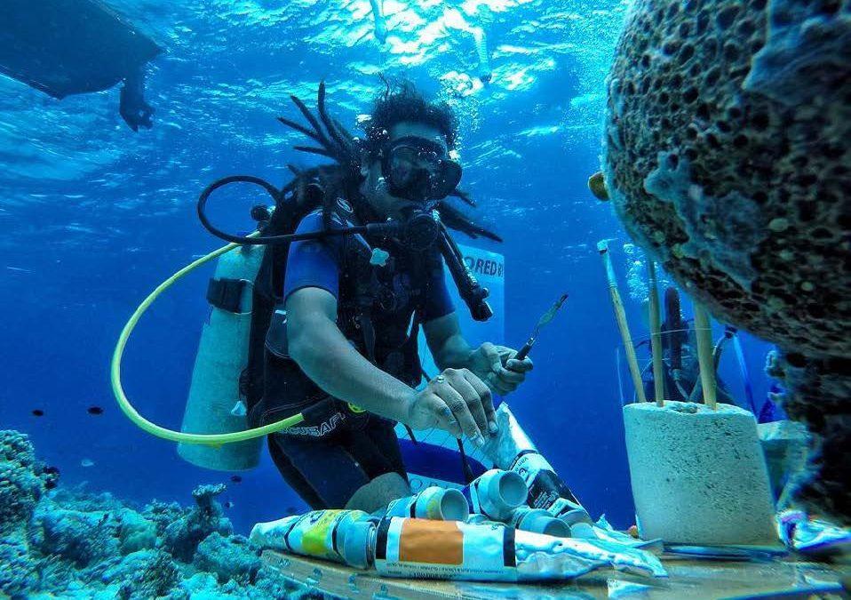 Unterwasserfestival auf den Malediven
