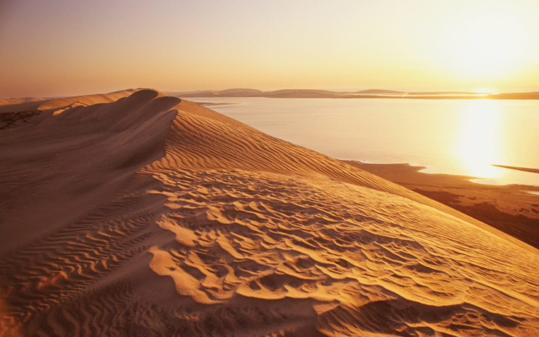Neues Entwicklungsprojekt für Camper in Khor Al-Adaid in Katar