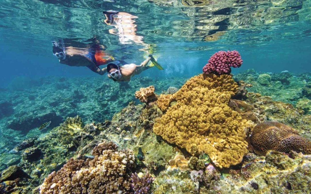 Aktiver Meeresschutz auf den Fiji-Inseln