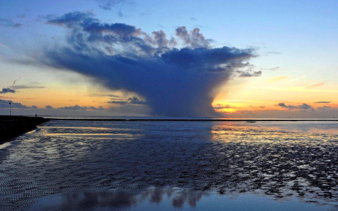 10 Jahre Weltnaturerbe Wattenmeer – was hat die Auszeichnung gebracht?