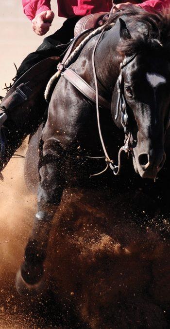Scottsdale: Westernreitsport-Event mit über 1.500 Reitern