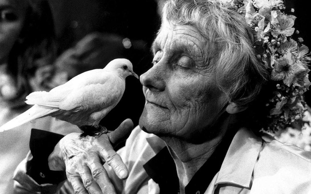 Führung durch die Wohnung der Autorin Astrid Lindgren