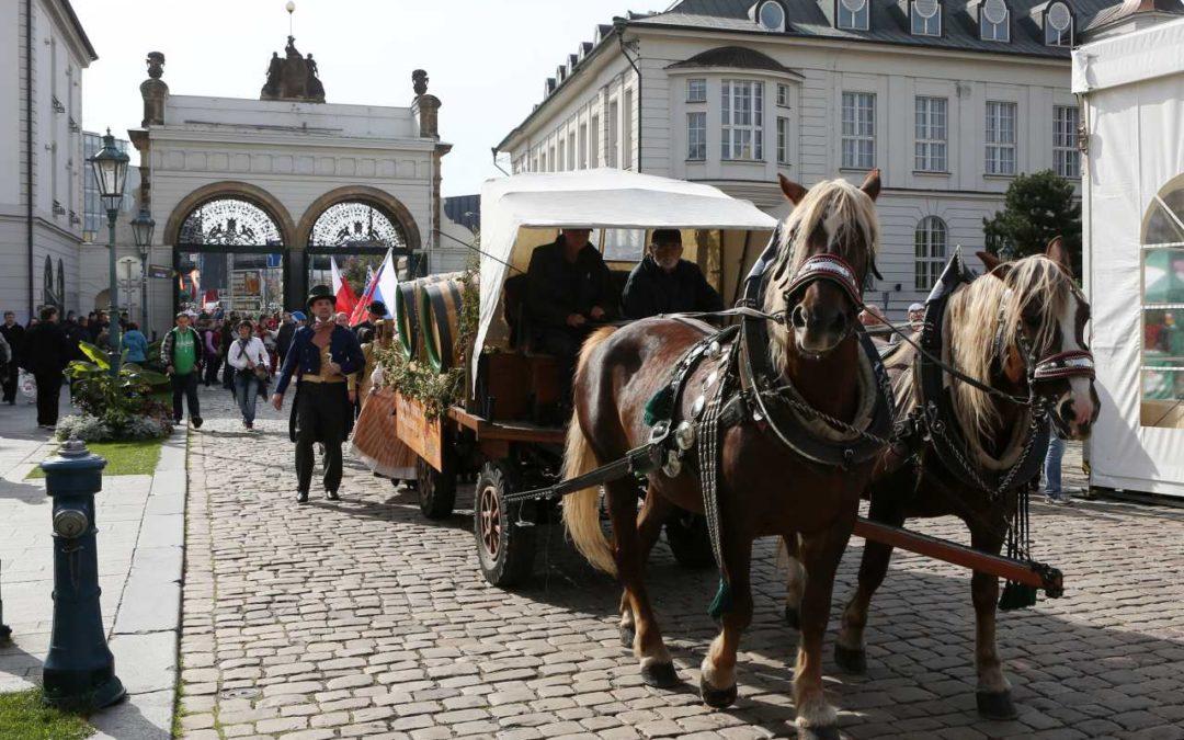Geheimtipps von Locals für Tschechien Urlauber