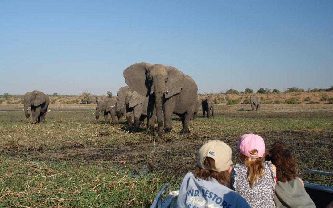 Venter Tours baut Angebot an Familienreisen nach Afrika aus