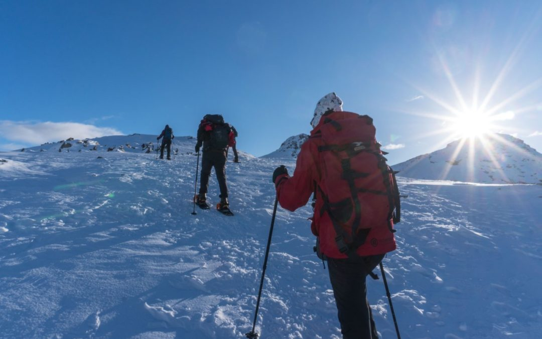 Entdeckungstouren auf Schneeschuhen durch Lappland und die Lofoten