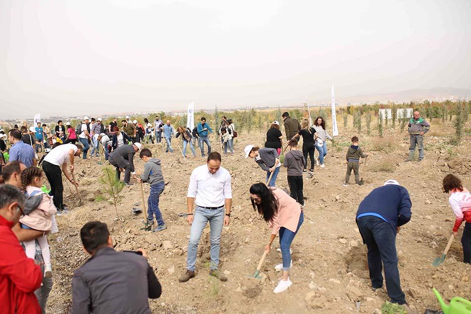 Umweltschutz: SunExpress pflanzt Wald in Ankara an