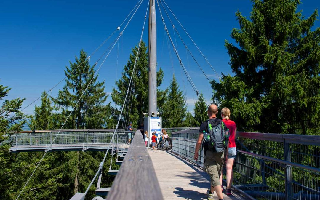 Jubiläums-Sonderveranstaltungen im skywalk allgäu 2020