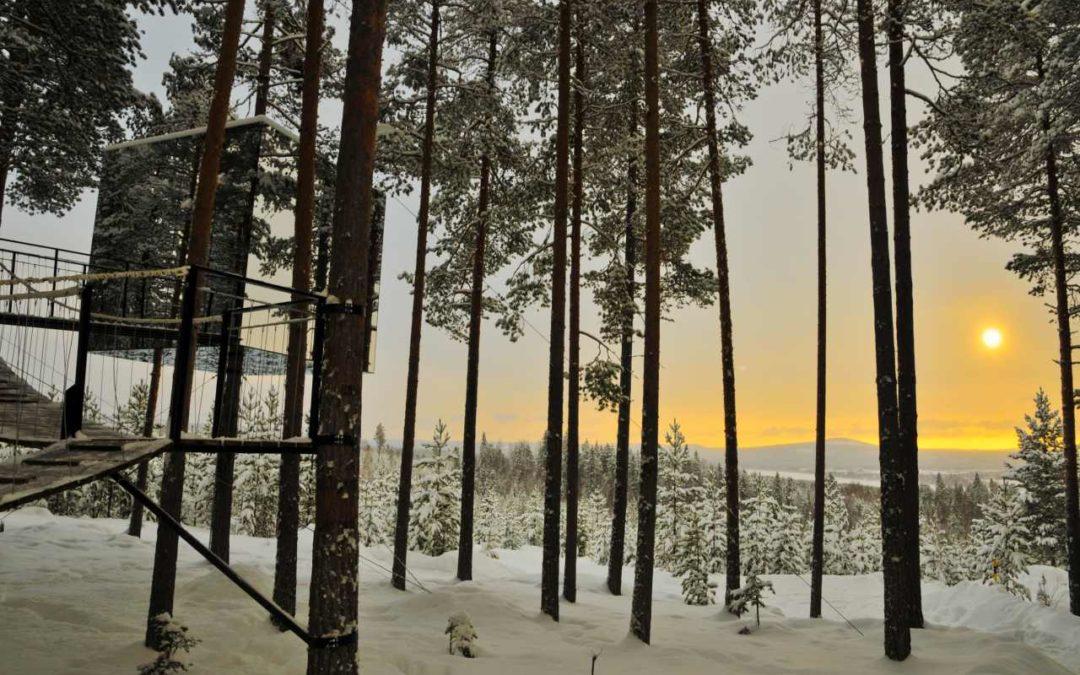 Treehotel in Schwedisch Lappland bestes Themahotel weltweit 2019