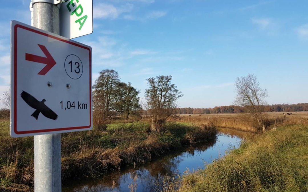 Neue Wanderwege durch die Lewitz-Region