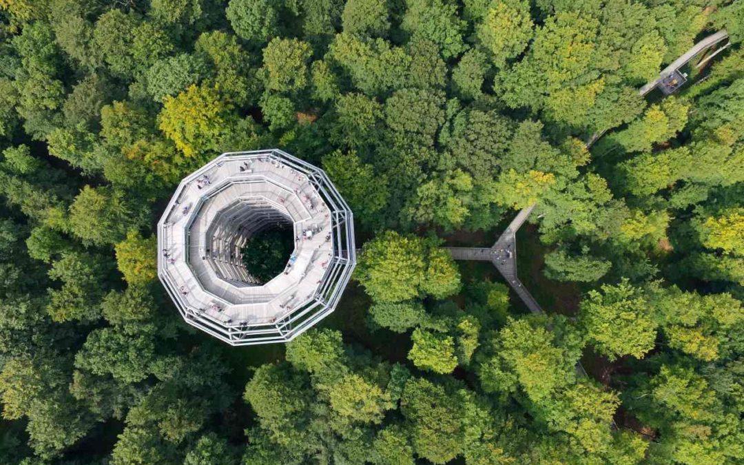 Baumwipfelpfad Rügen: neue Rutsche erleichtert Besuchern den Abstieg