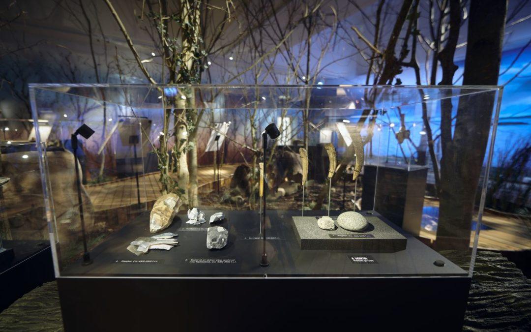 Kaugummi aus der Steinzeit in der LOLA!-Ausstellung in Maribo