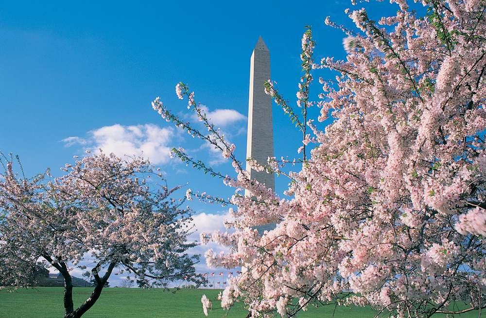 Washington Monument kann wieder besichtigt werden